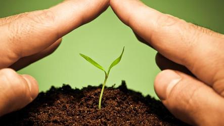 [Artigo] A inovação no mercado de seguros e seu impacto no ramo agrícola