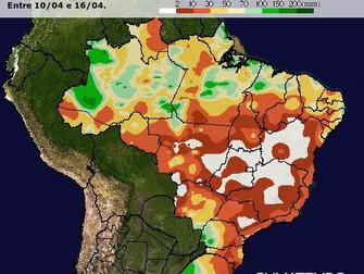 Ausência de chuva pode reduzir produtividade do milho safrinha