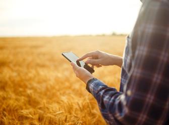 [Artigo] Seguro rural 100% digital
