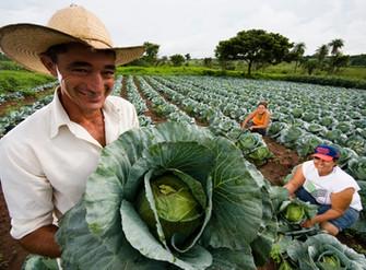 Conselho Monetário Nacional (CMN) amplia Seguro da Agricultura Familiar (Seaf)