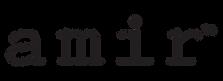 Amir-logo.png