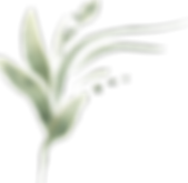 Flowers_Leaves__0069_74.png