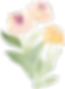 Flowers_Leaves__0036_37.png