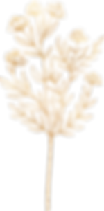 Flowers_Leaves__0066_71.png