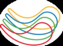 logo aci RRSS_edited.png