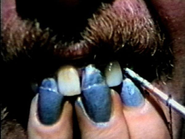 tooth&nailcopy.jpg
