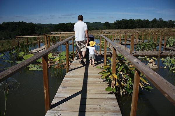 watertuinen, Dordogne, vlonderpaden, lelies, vijver, kind