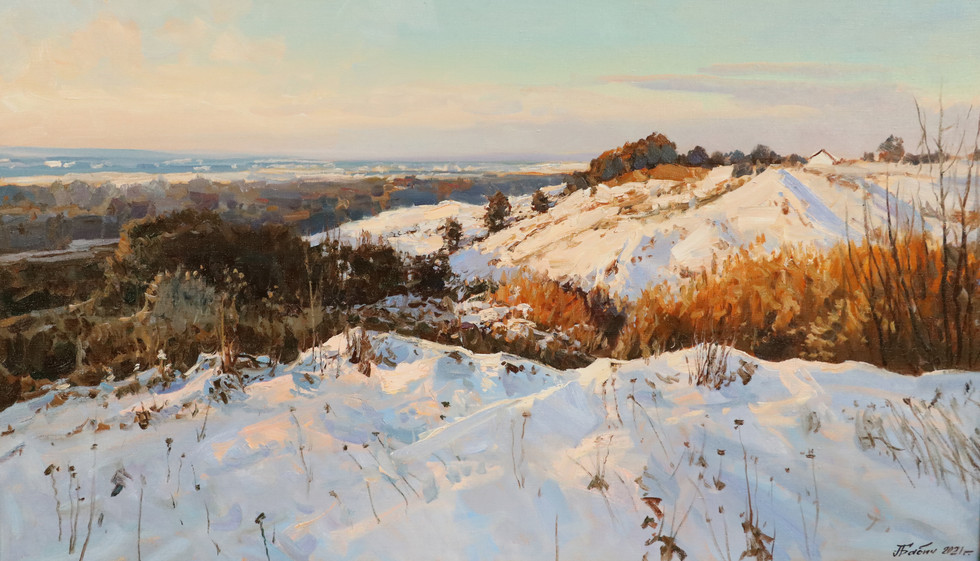 Зима на окраине деревни.60х102..JPG
