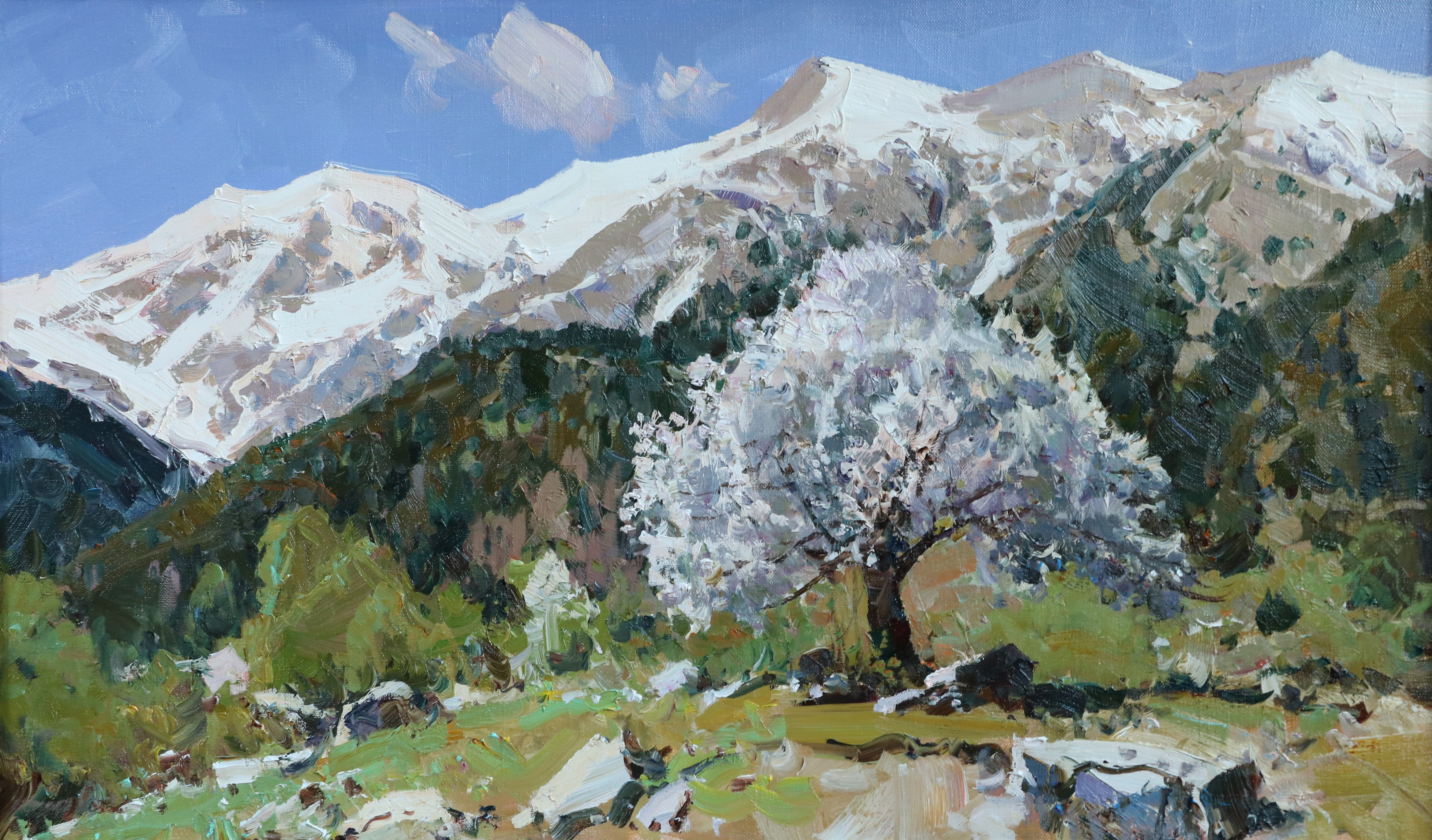 Весна.Цветущее дерево.45х75.