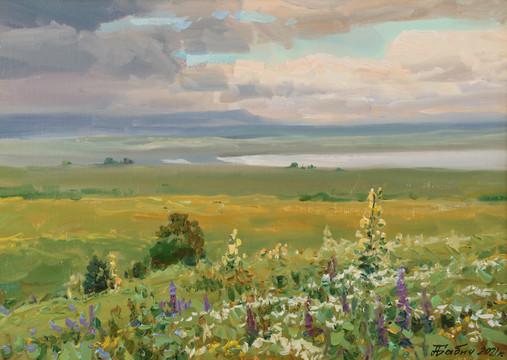 Цветущие поля Ставрополья.33.5х47..JPG