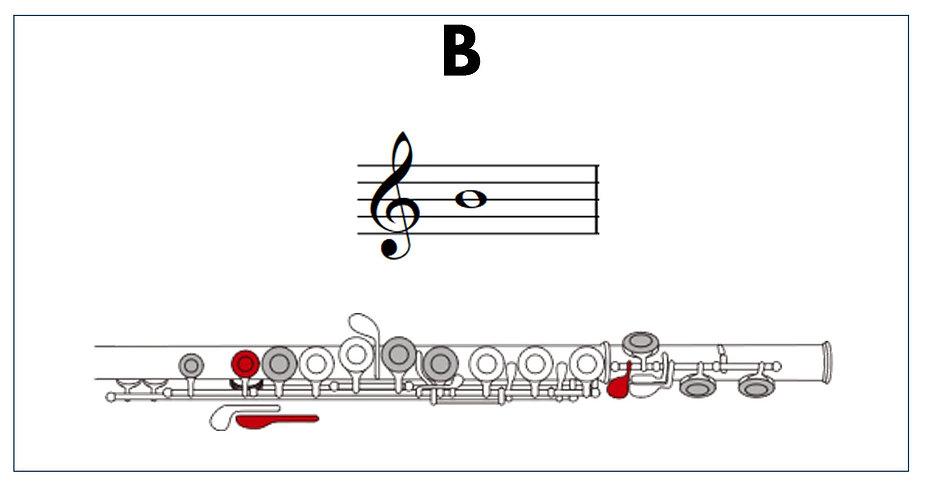 flute fingers B.jpg