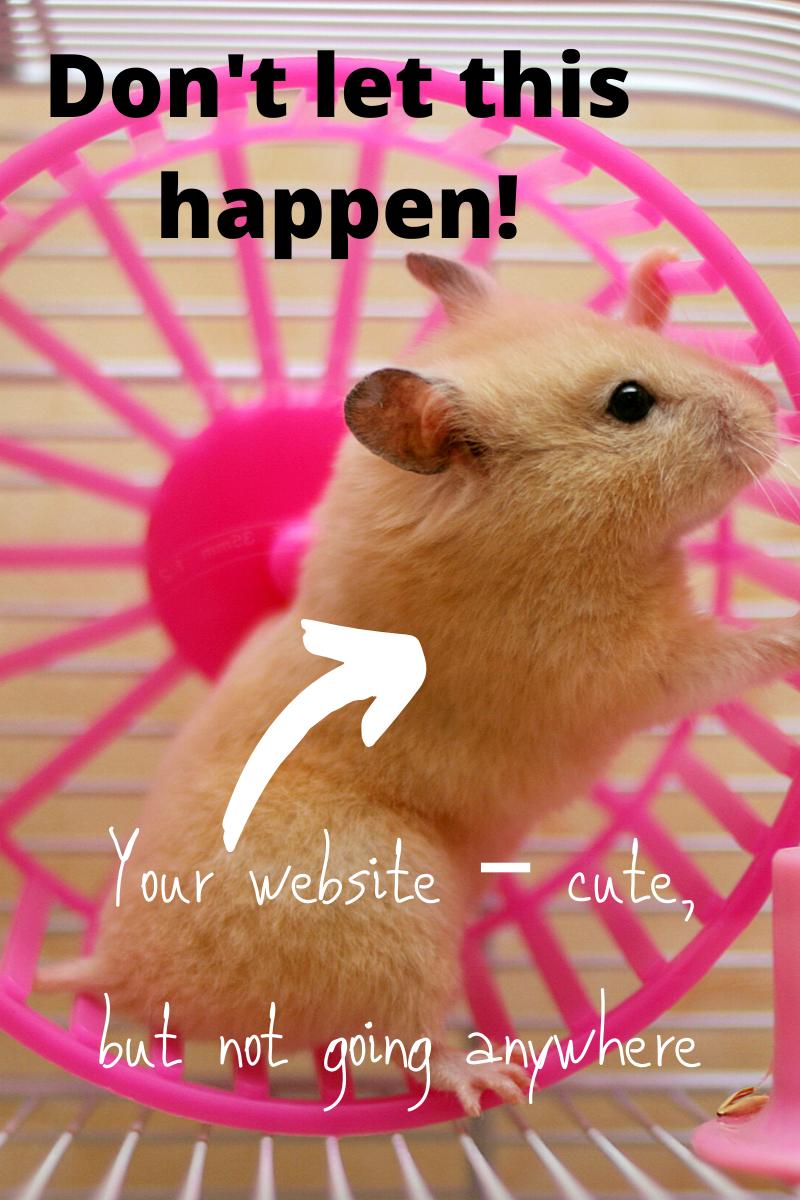 You website – cute but not going anywhere. Hamster in a wheel, representing an attractive page that doesn't go anywhere.