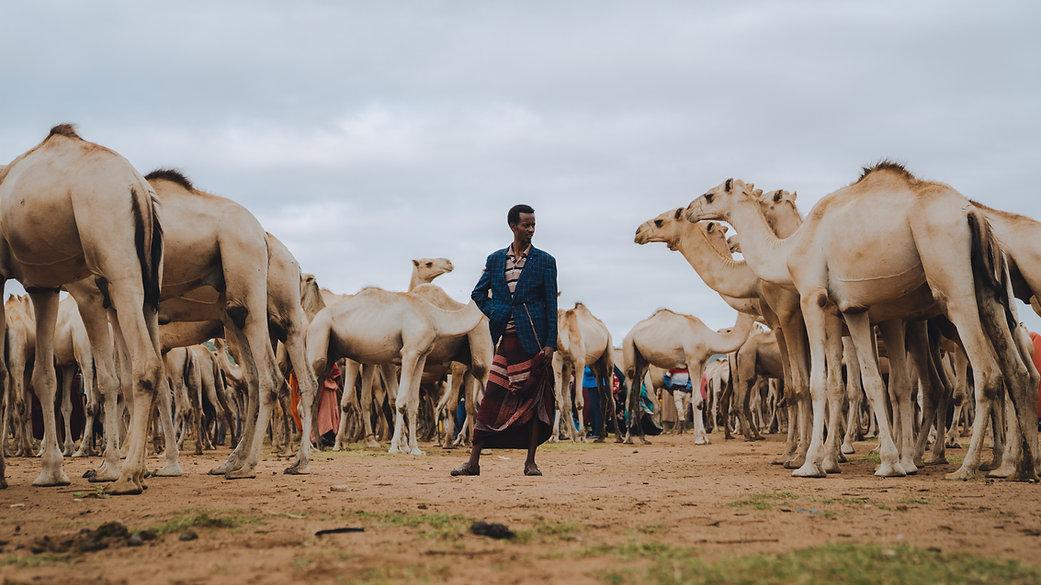 Ethiopia-04877.jpg
