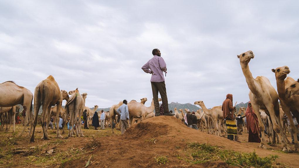 Ethiopia-04941.jpg