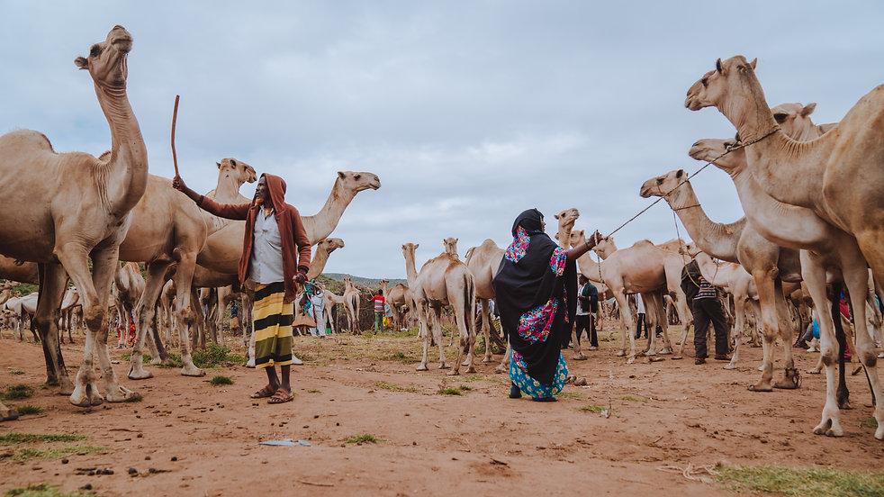 Ethiopia-04893.jpg