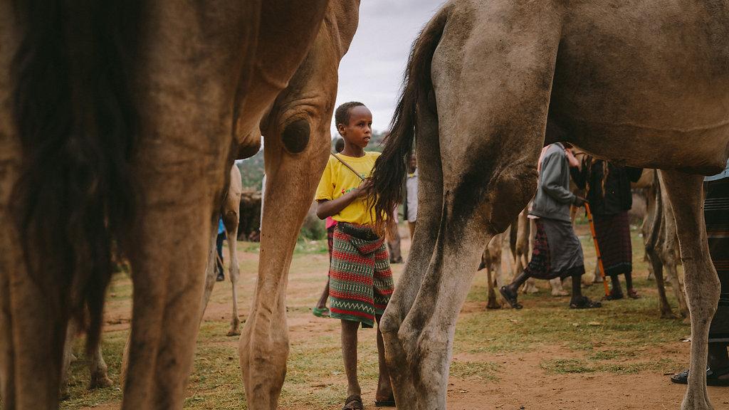 Ethiopia-04854.jpg