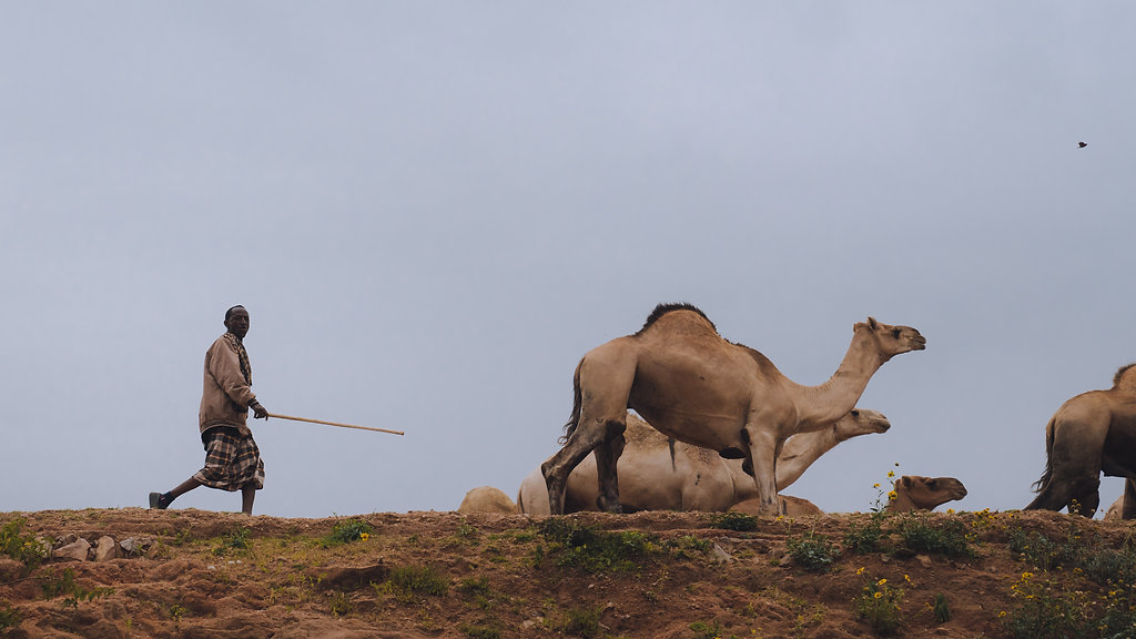 Ethiopia-04791.jpg