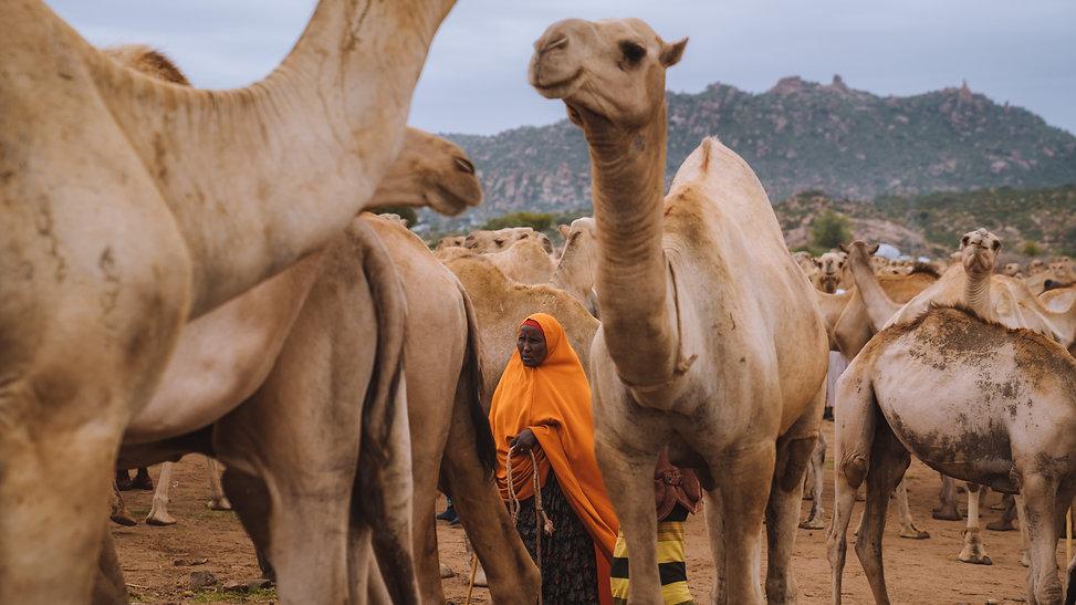 Ethiopia-04932.jpg