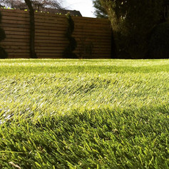 Perfect lawn- AstroTurf installed by #uk