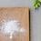 Thumbnail: Grapefruit Polishing Powder