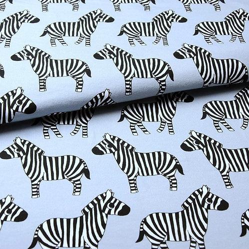 Zebra - Eva Mouton