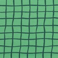 ruitjes groen.jpg