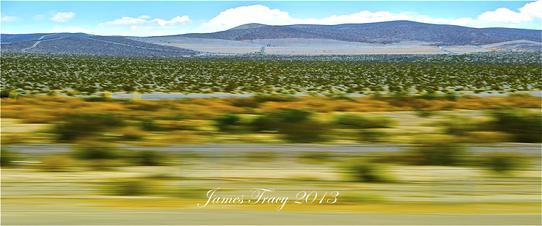 542_Desert6