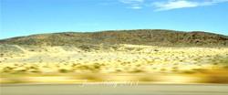542_Desert8