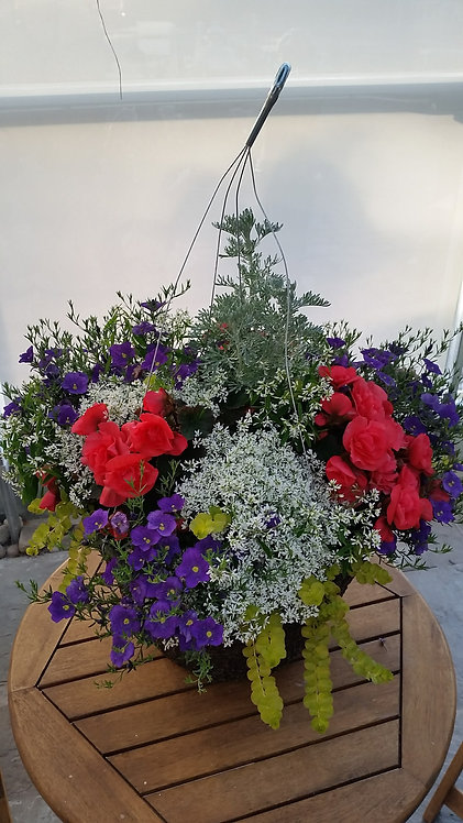 "Wedding Bells 12"" & 14"" Hanging Basket"