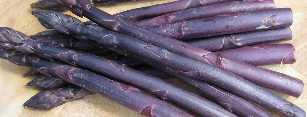 Novelty Purple Asparagus Pkg of 3