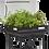 Thumbnail: Vegepod Container Garden