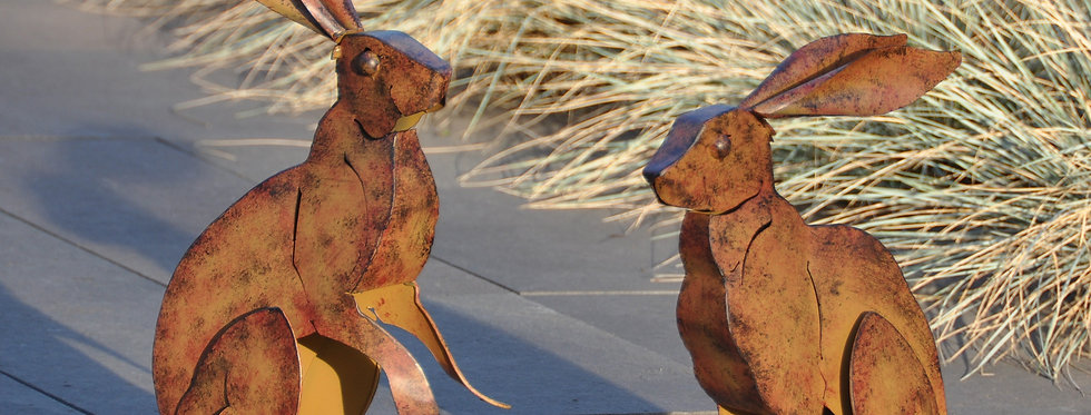 Peter Rabbits