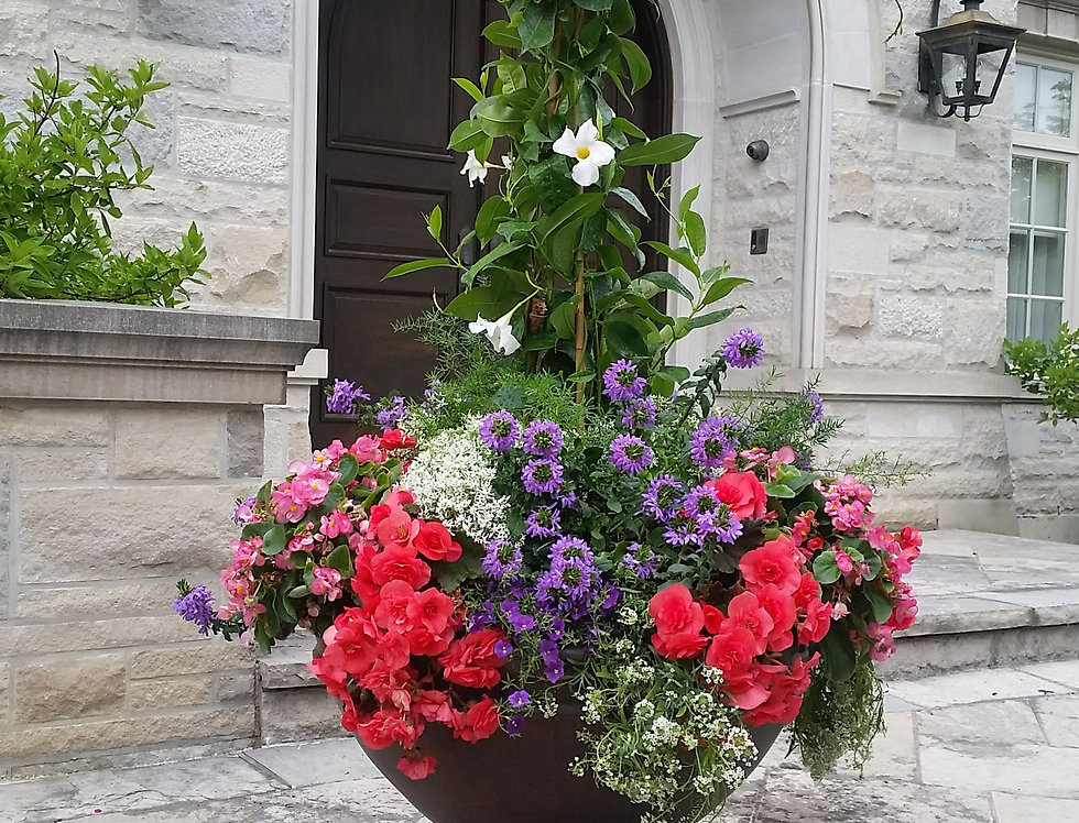 Custom Sun Containers Please call to book. 905-727-4349