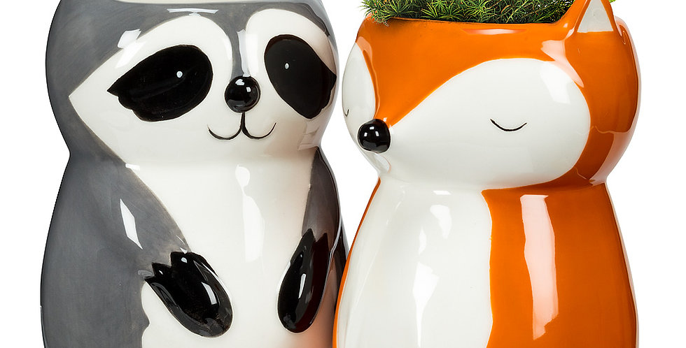 "Sitting Raccoon Planter/Vase-4""H"