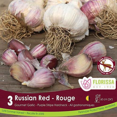 Russian Red Garlic Pkg of 3
