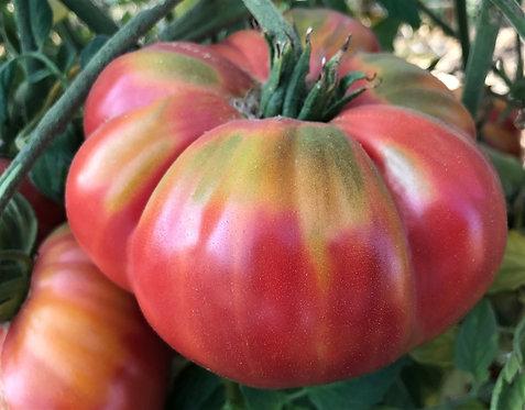 Heirloom Watermelon Beeksteak Tomato