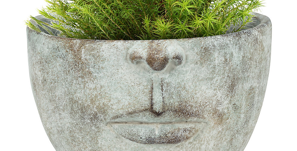"Half Face Planter-9""D"