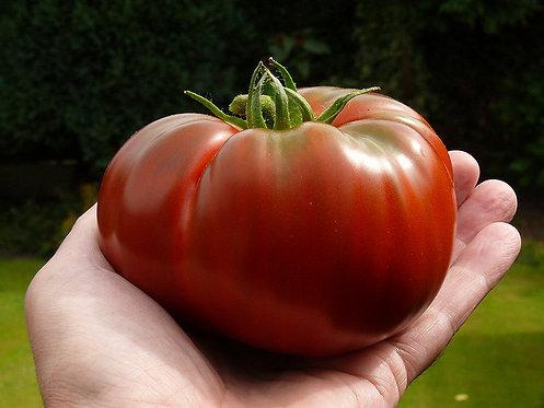 Non-GMO Paul Robeson Tomato