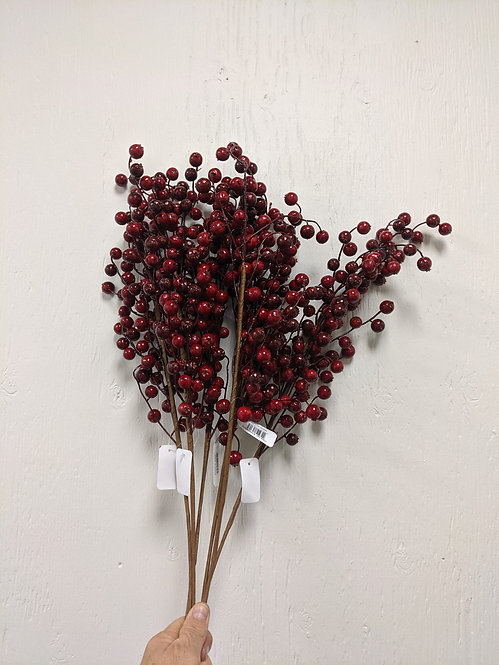 Red Berry Stems