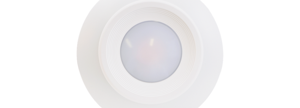 ECO Disk Light 2.png