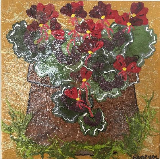 """Flowers of Forsyth - Geraniums"""