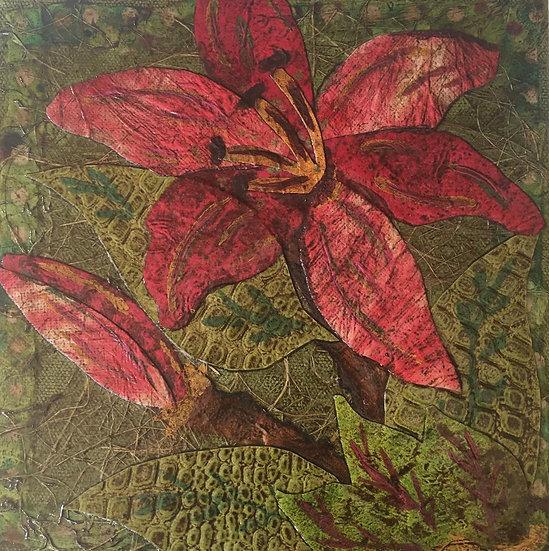"""Flowers of Forsyth - Stargazer"""