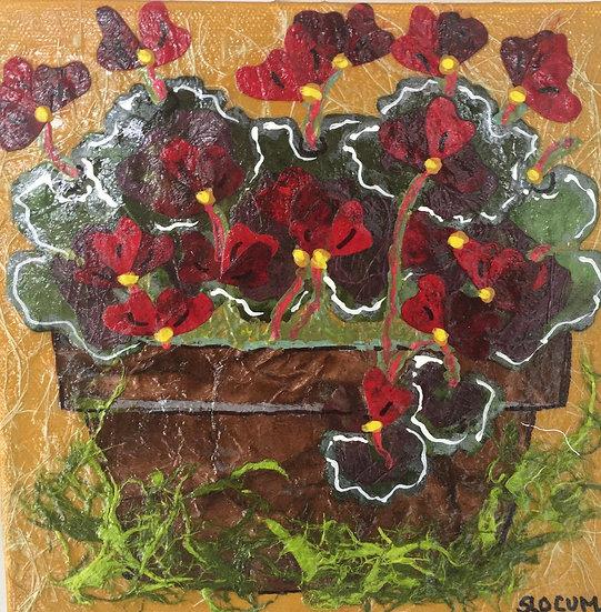 """Flowers of Forsyth - Geranium 2"""