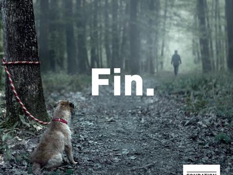 N'abandonnez pas votre animal !
