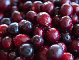Cranberry-Sauce-on-the-Grill.jpg