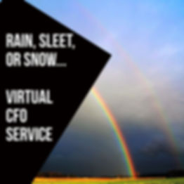 The Healthcare CFO Virtual CFO Services