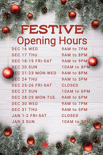 Copy of Christmas Opening Hours Poster T