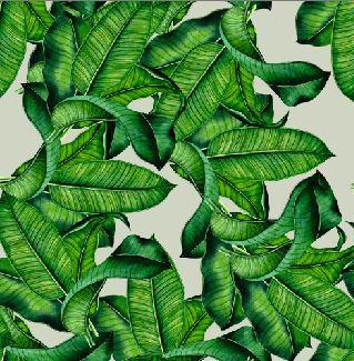 green leafs.JPG