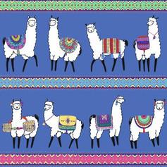 llamas in Mexico.JPG