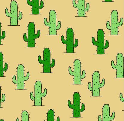 cactus everywhere.JPG